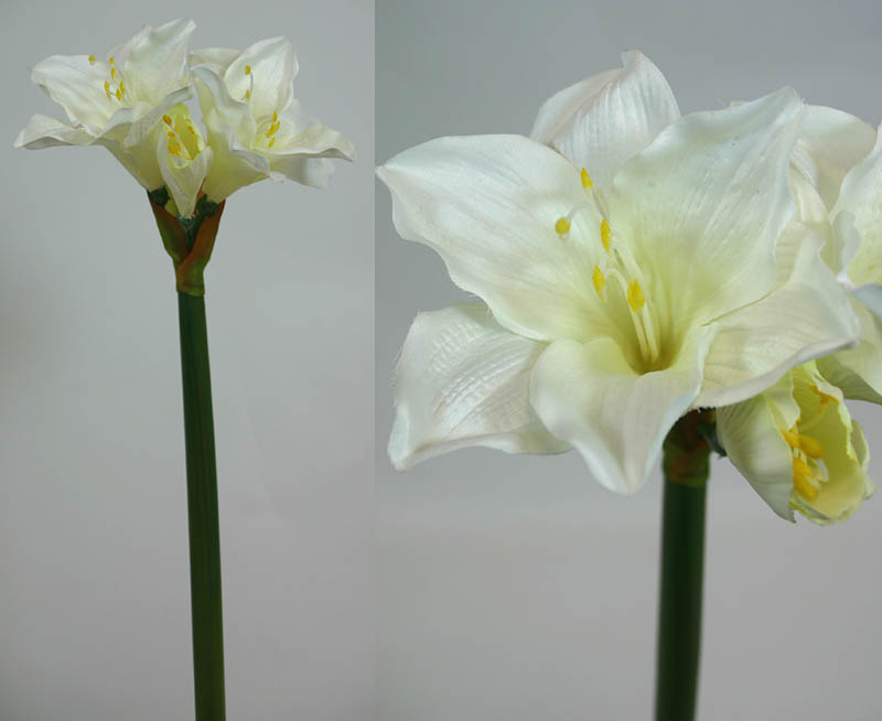 amaryllis wei creme 65cm ga seidenblumen kunstblumen ebay. Black Bedroom Furniture Sets. Home Design Ideas