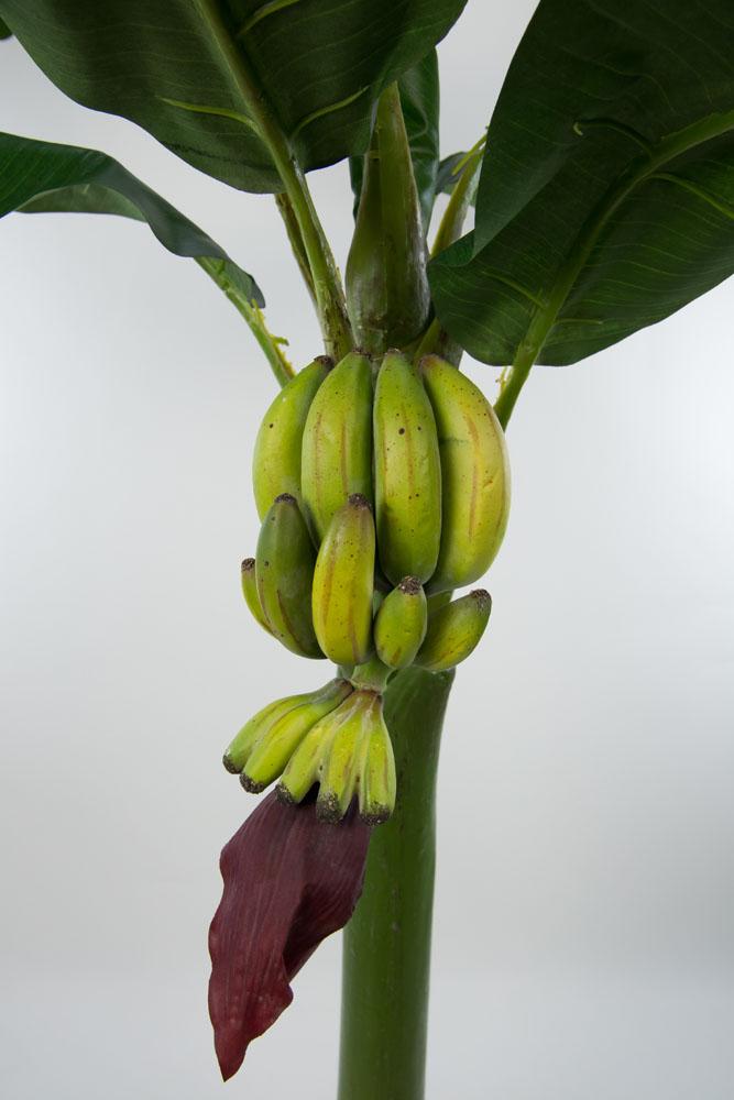 bananenbaum 120cm ga kunstpflanzen k nstliche bananenpalme. Black Bedroom Furniture Sets. Home Design Ideas