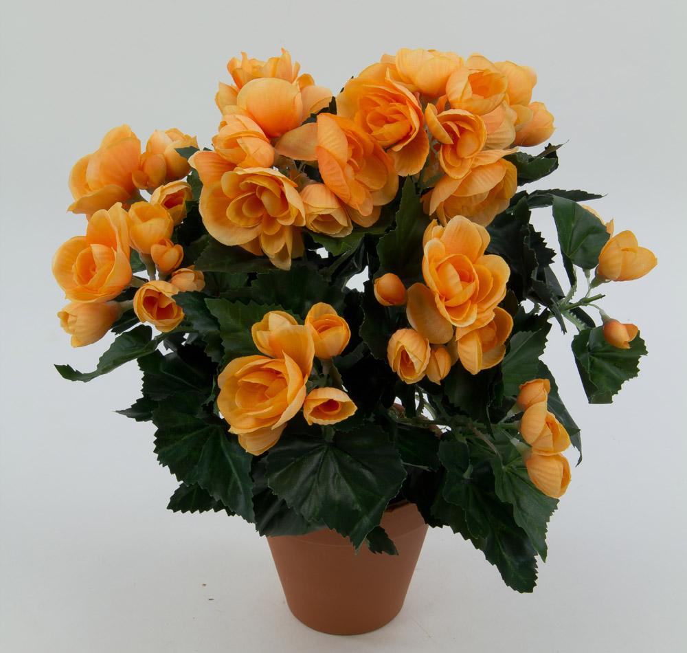 begonie 30cm orange ig kunstpflanzen k nstliche blumen. Black Bedroom Furniture Sets. Home Design Ideas