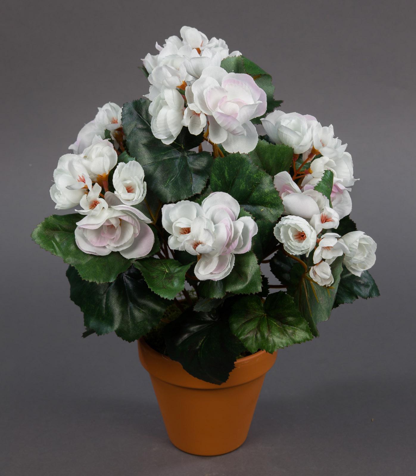 begonie 34cm wei pf kunstpflanzen k nstliche blumen pflanzen kunstblumen ebay. Black Bedroom Furniture Sets. Home Design Ideas