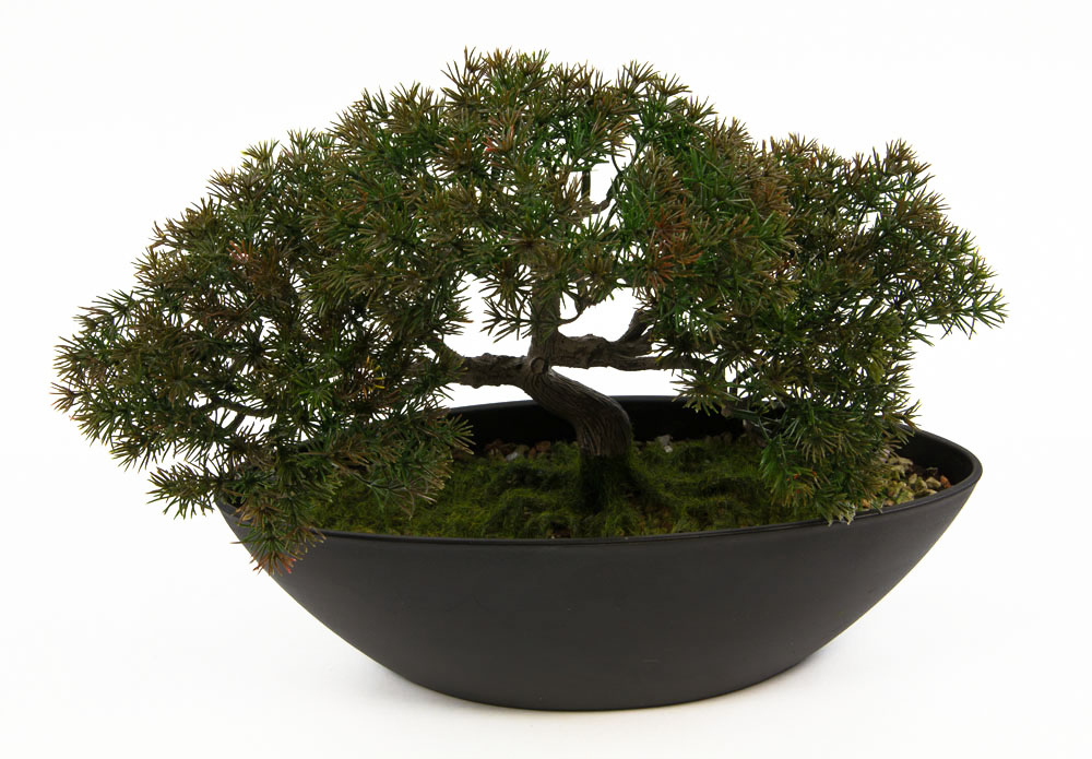 bonsai hiroshi japanische l rche 36x26cm pf kunstbaum kunstpflanzen k nstlicher ebay. Black Bedroom Furniture Sets. Home Design Ideas