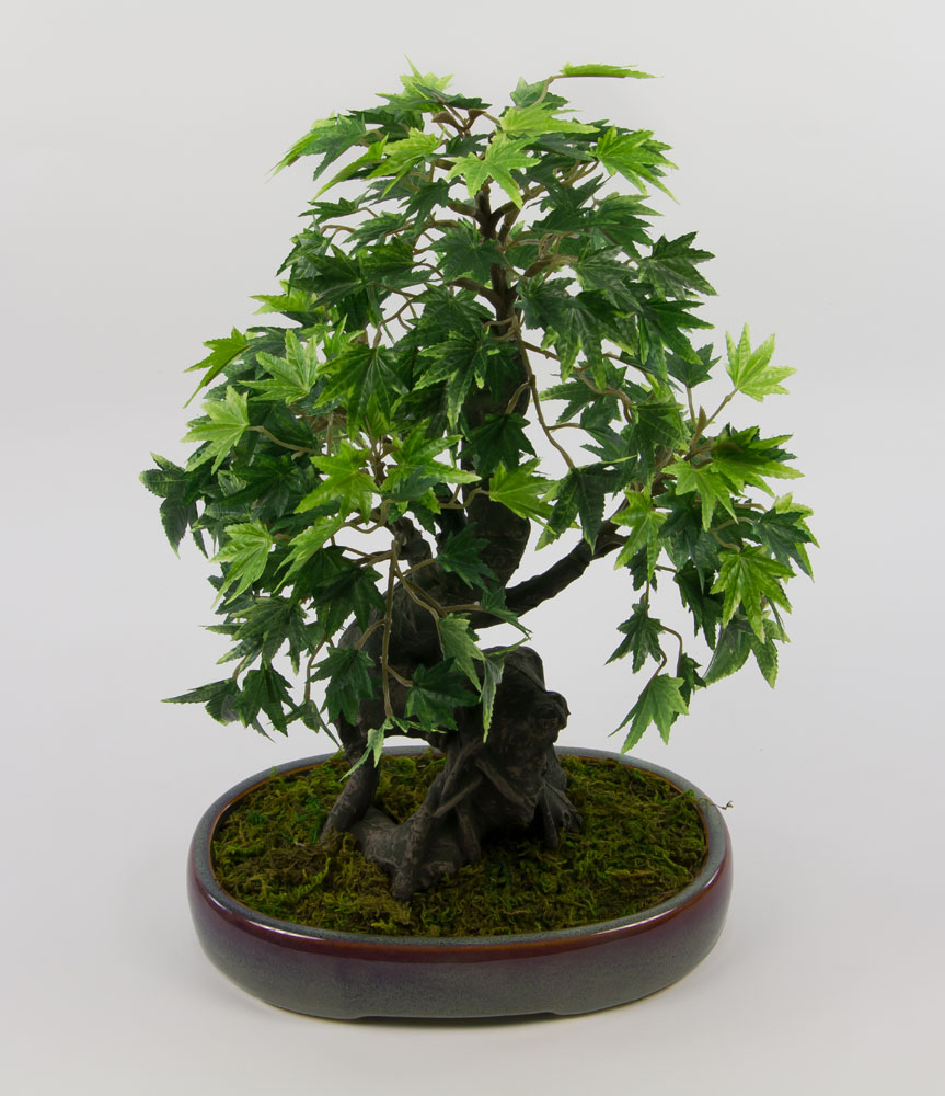bonsai japanischer ahorn 38x28cm pf kunstbaum kunstpflanzen k nstlicher baum ebay. Black Bedroom Furniture Sets. Home Design Ideas