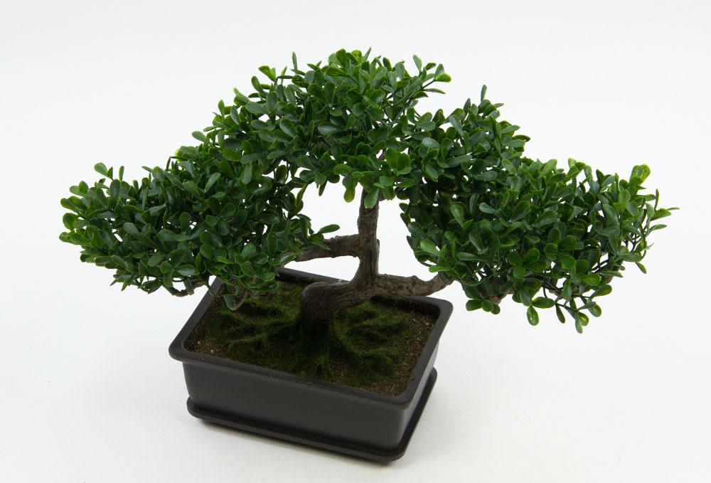bonsai osaka buchsbaum kunstpflanzen kunstbaum. Black Bedroom Furniture Sets. Home Design Ideas