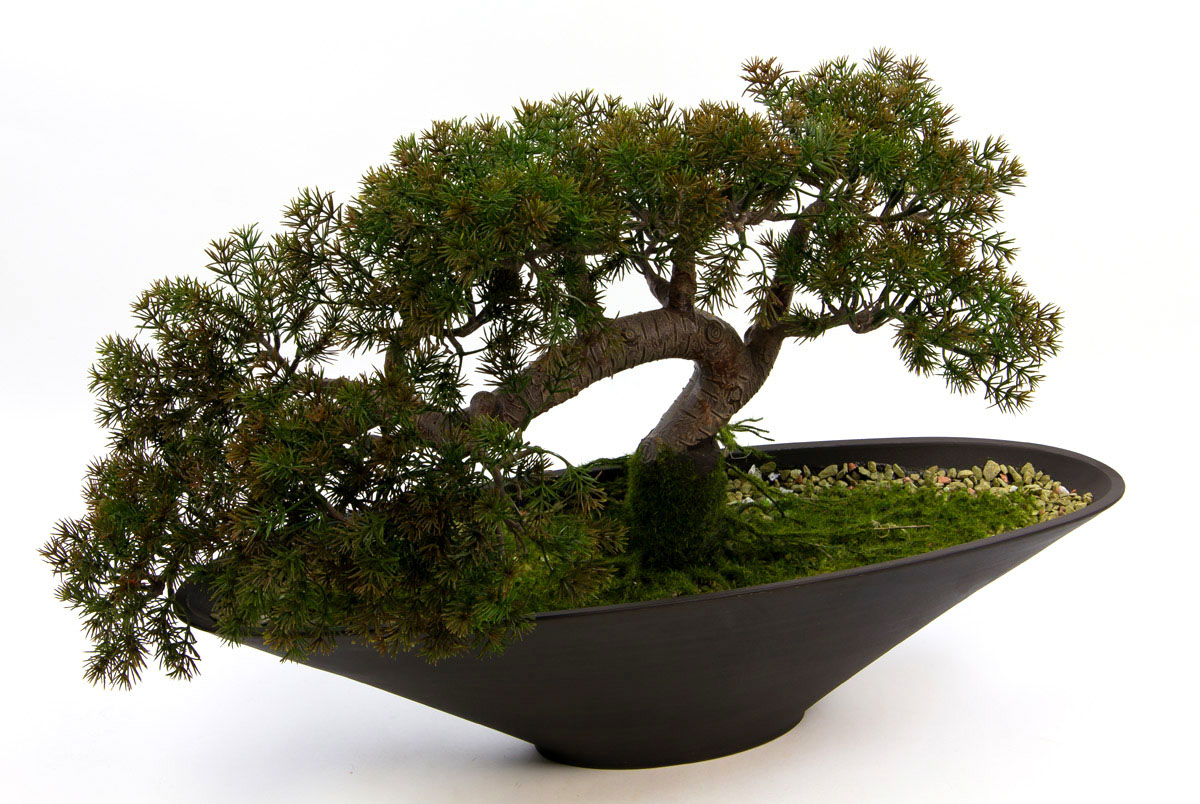 bonsai takeru 58x40cm japanische l rche pf kunstpflanzen k nstlicher baum ebay. Black Bedroom Furniture Sets. Home Design Ideas