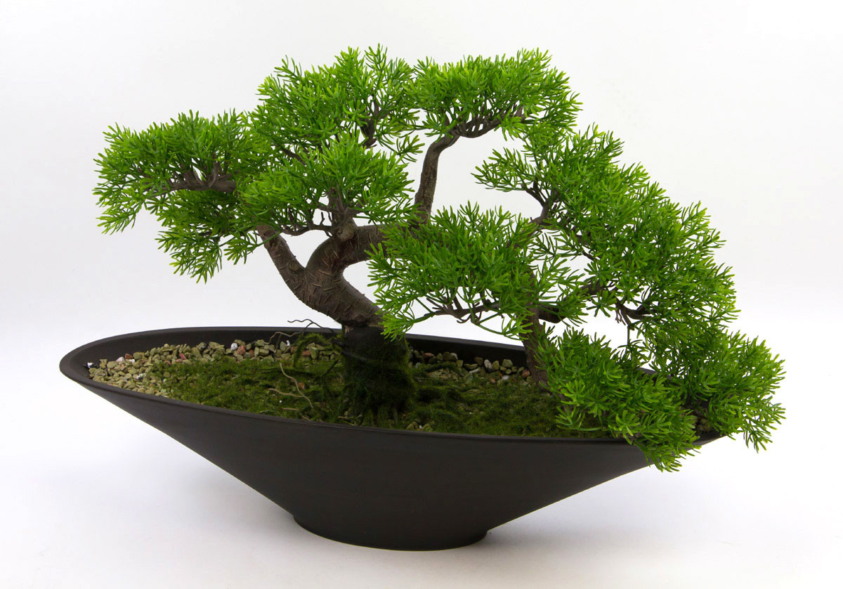 bonsai takeru 58x40cm podocarpus pf kunstpflanzen. Black Bedroom Furniture Sets. Home Design Ideas