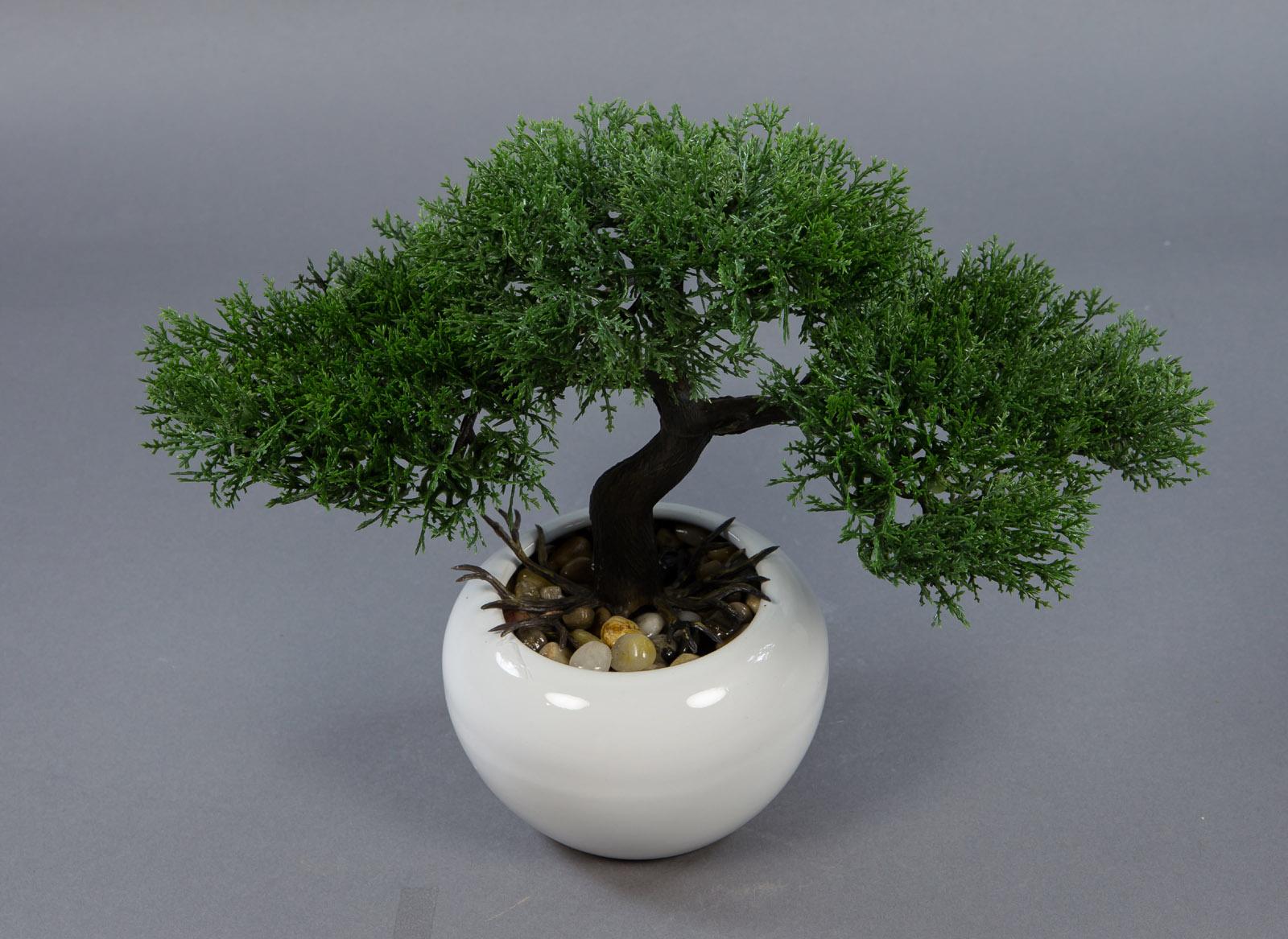 bonsai zeder 24x32cm in wei er vase dp kunstpflanzen k nstlicher baum pflanzen ebay. Black Bedroom Furniture Sets. Home Design Ideas