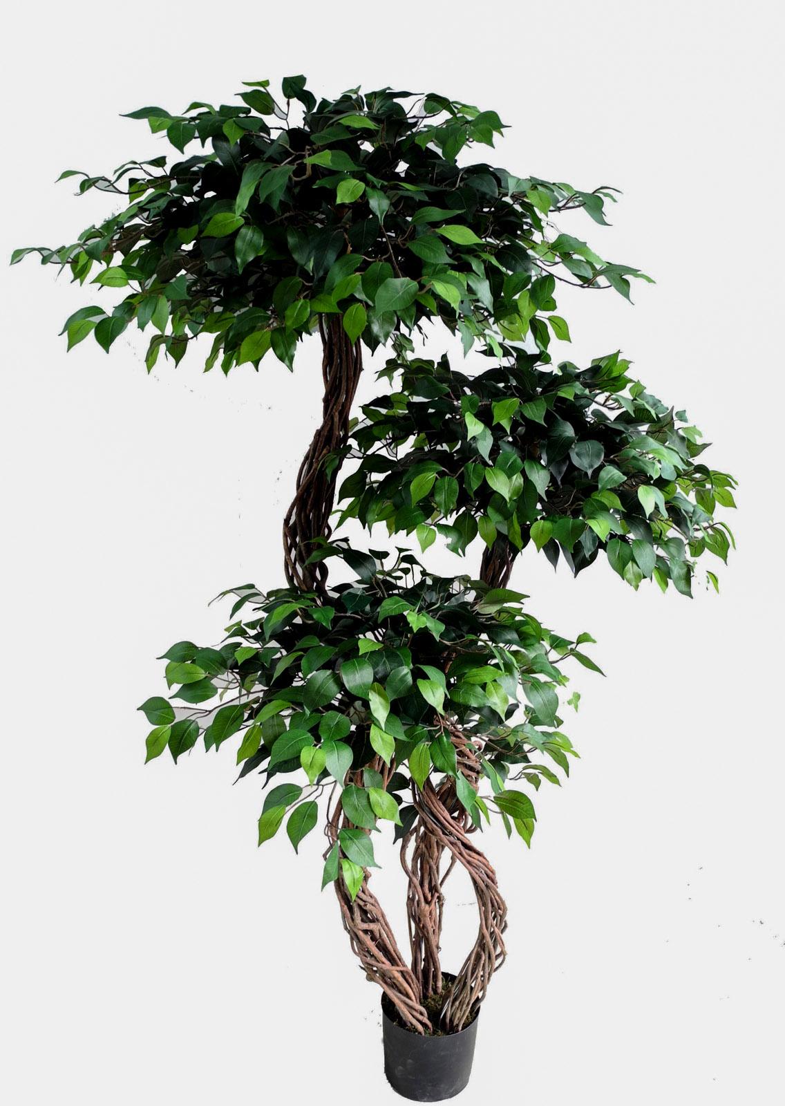crazy ficus 180 da k nstlicher baum kunstbaum kunstpflanzen k nstb ume ebay. Black Bedroom Furniture Sets. Home Design Ideas