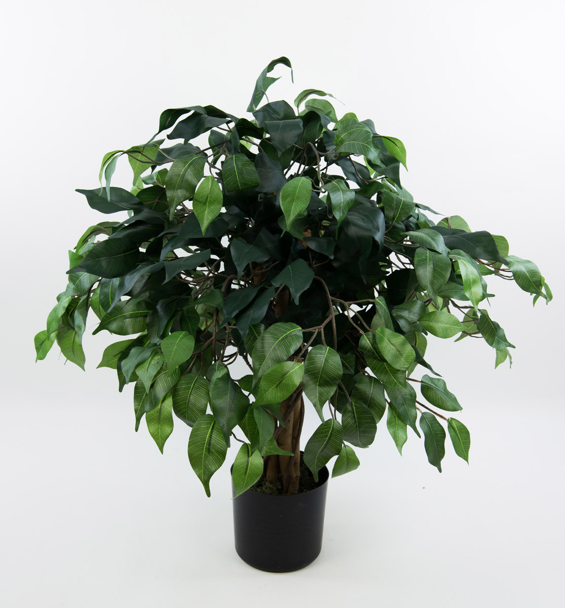 ficus benjamini 60cm gr n da k nstlicher baum kunstbaum. Black Bedroom Furniture Sets. Home Design Ideas
