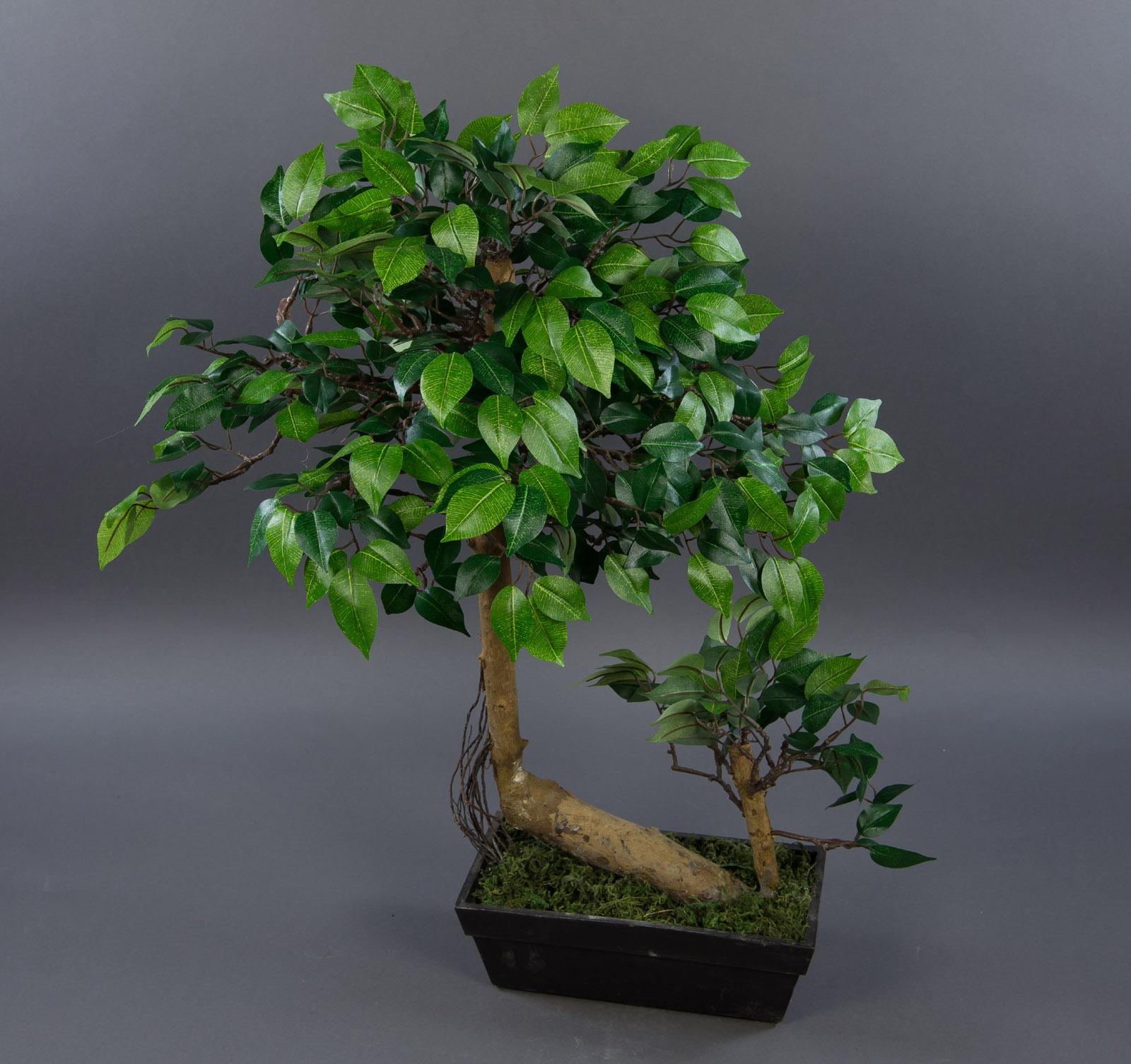 ficus bonsai in schale 60x50cm ga k nstlicher baum kunstbaum kunstpflanzen ebay. Black Bedroom Furniture Sets. Home Design Ideas