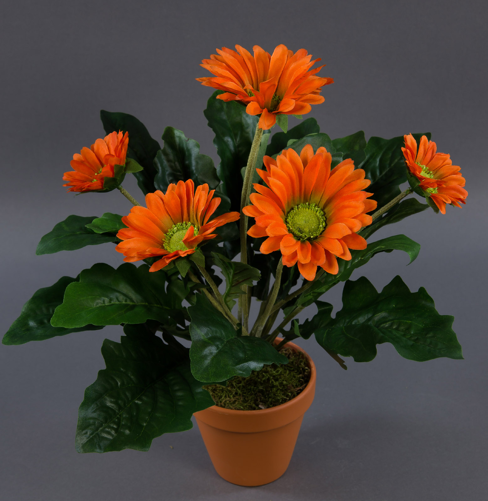 gerbera 38cm orange im topf ga kunstpflanzen k nstliche pflanzen kunstblumen ebay. Black Bedroom Furniture Sets. Home Design Ideas