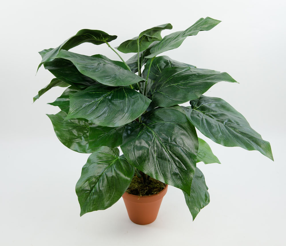gro e philo pflanze 65cm ar kunstpflanzen k nstliche pflanzen ebay. Black Bedroom Furniture Sets. Home Design Ideas