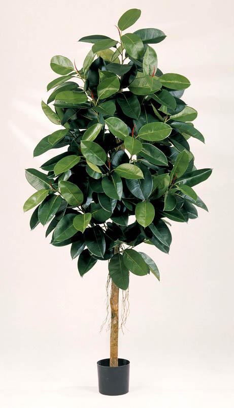 Details zu gummibaum 180cm künstliche pflanzen kunstbaum