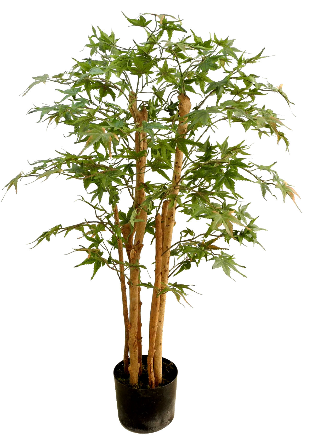 japanischer ahornbaum 90cm da kunstbaum kunstpflanzen. Black Bedroom Furniture Sets. Home Design Ideas