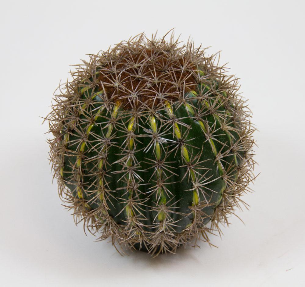 kaktus rund 14cm ar kunstpflanzen k nstliche pflanzen ebay. Black Bedroom Furniture Sets. Home Design Ideas