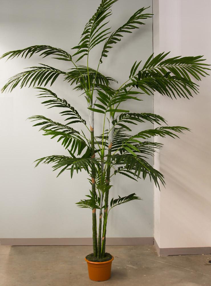 kentiapalme 250 280cm im topf ga k nstliche palme kunstpalme dekopalme ebay. Black Bedroom Furniture Sets. Home Design Ideas
