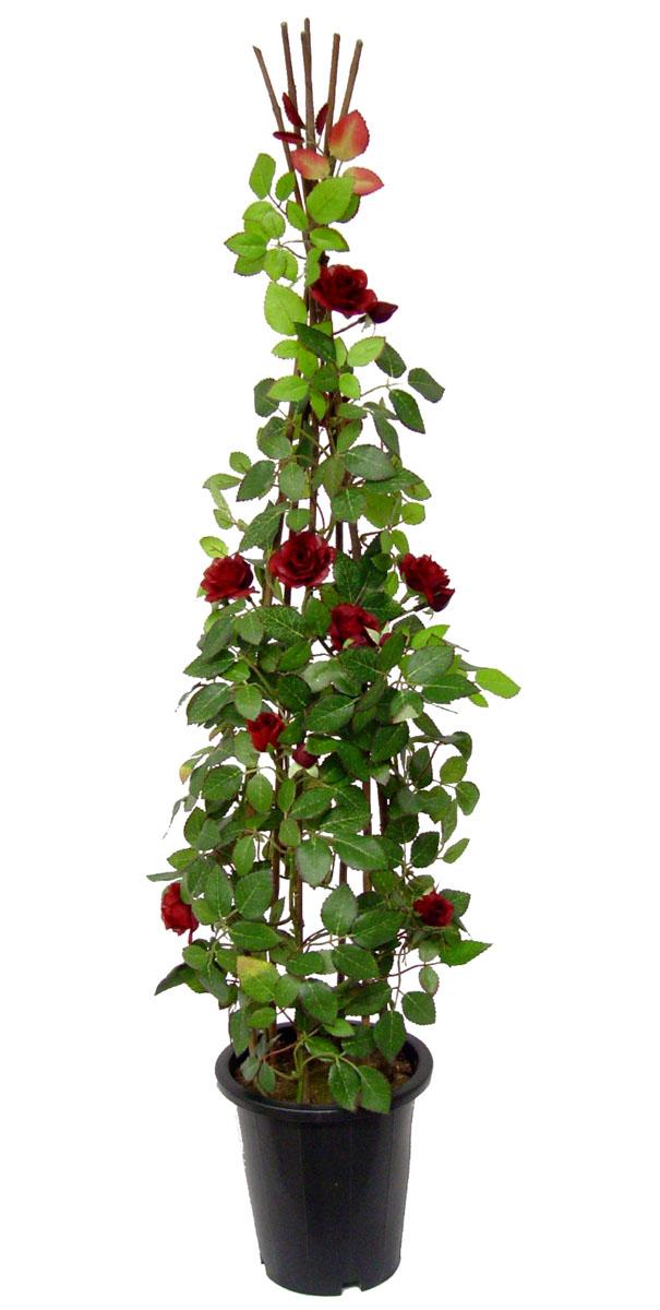 kletterrose rosenstrauch 90cm rot ig k nstliche rose. Black Bedroom Furniture Sets. Home Design Ideas