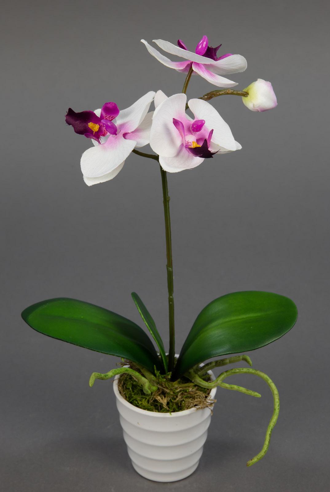 orchidee 32cm wei pink im wei en dekotopf ga kunstpflanzen k nstliche blumen ebay. Black Bedroom Furniture Sets. Home Design Ideas