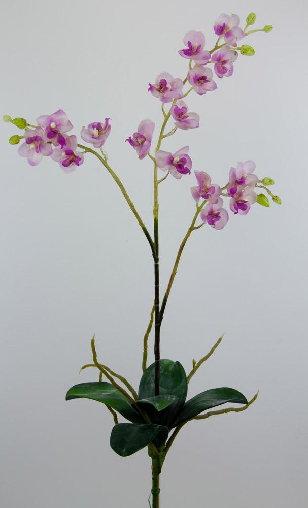 orchidee 58cm flieder mit 16 bl und bl tter ja ohne topf ja k nstliche blumen. Black Bedroom Furniture Sets. Home Design Ideas