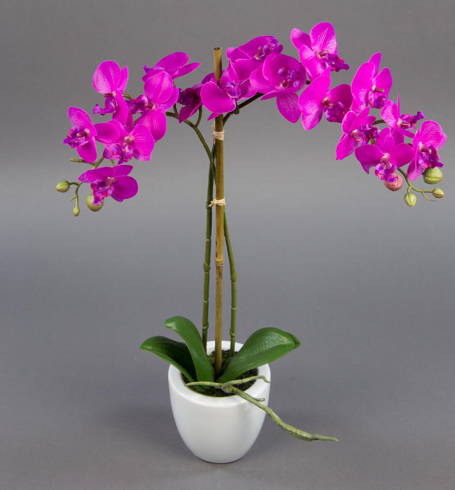 orchidee real touch 55cm fuchsia mit 2 rispen ga k nstliche blumen kunstblumen ebay. Black Bedroom Furniture Sets. Home Design Ideas
