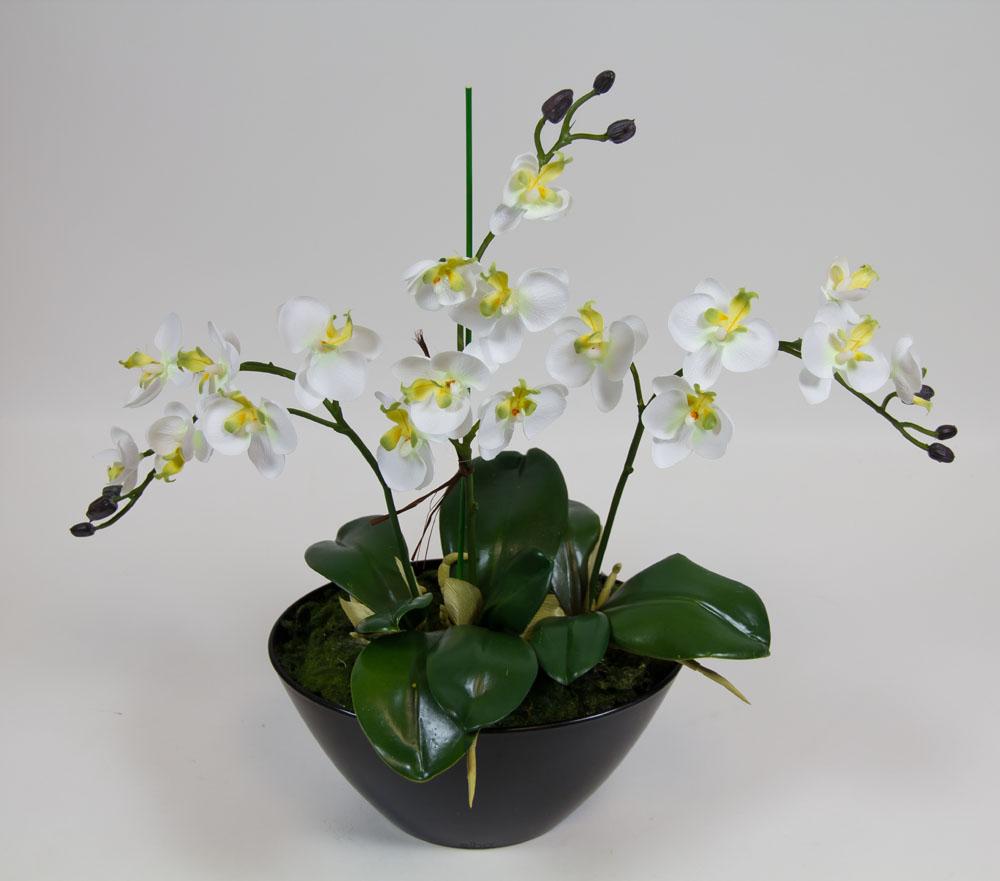Orchideen arrangement 38x35cm wei cg kunstblumen ebay - Orchideen arrangement ...