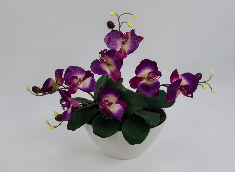 Orchideen arrangement 34x38cm lila in wei er dekoschale ar kunstblumen ebay - Orchideen arrangement ...