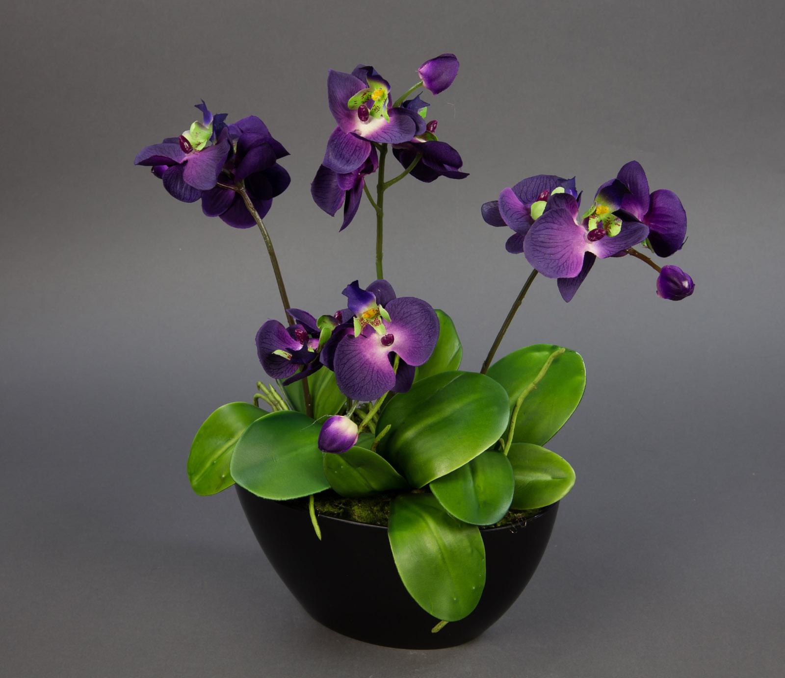 Orchideen arrangement 38x36cm lila in schwarzer dekoschale ga kunstblumen ebay - Orchideen arrangement ...