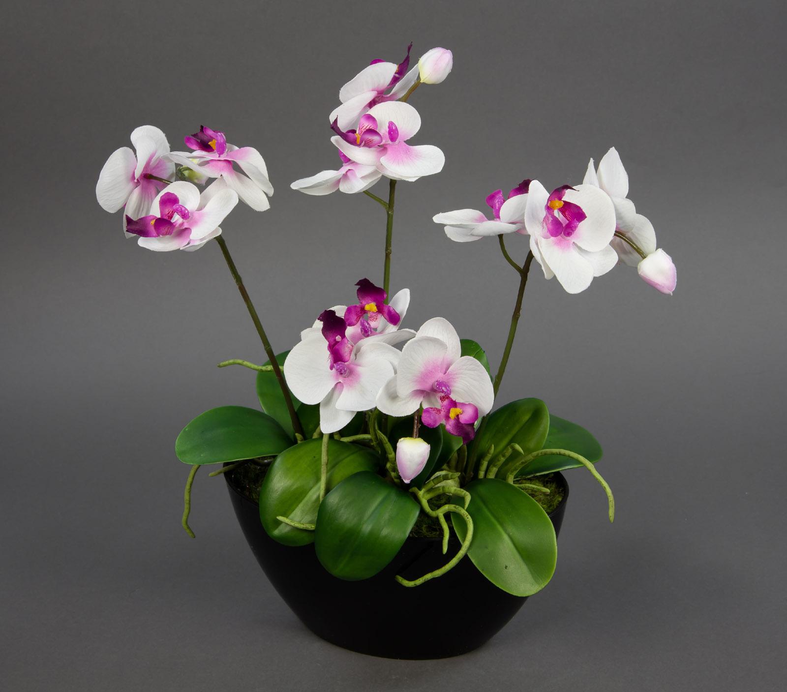 Orchideen arrangement 38x36cm wei pink in schwarzer dekoschale ga kunstblumen ebay - Orchideen arrangement ...