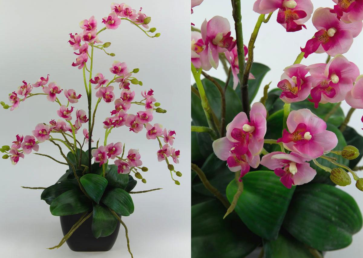 Orchideen-Arrangement rosa-pink im schwarzen Dekotopf JA ...