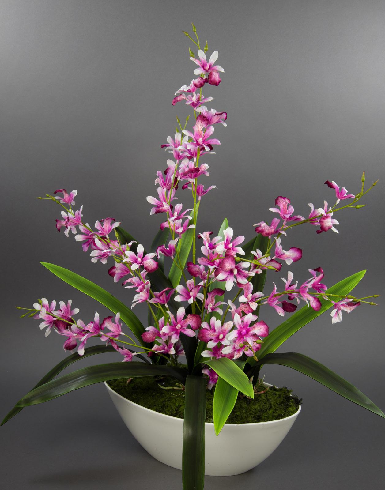 Orchideen arrangement 70x55cm fuchsia creme in wei er dekoschale ga kunstblumen ebay - Orchideen arrangement ...