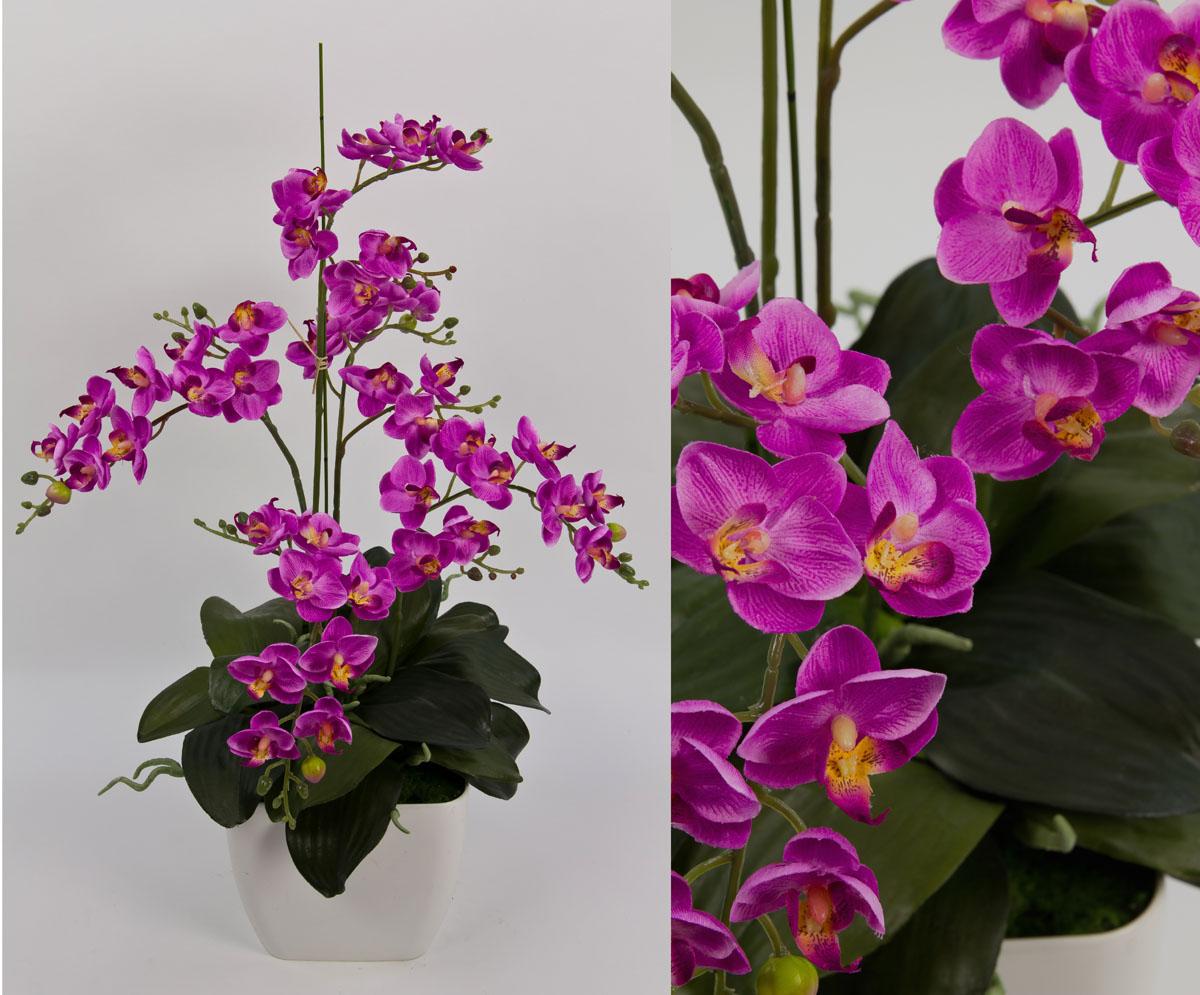 Orchideen arrangement ii fuchsia im wei en dekotopf cg k nstliche orchidee ebay - Orchideen arrangement ...
