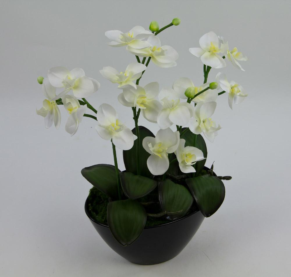 orchideen arrangement 34x32cm wei creme in schwarzer dekoschale ar kunstblumen ebay. Black Bedroom Furniture Sets. Home Design Ideas