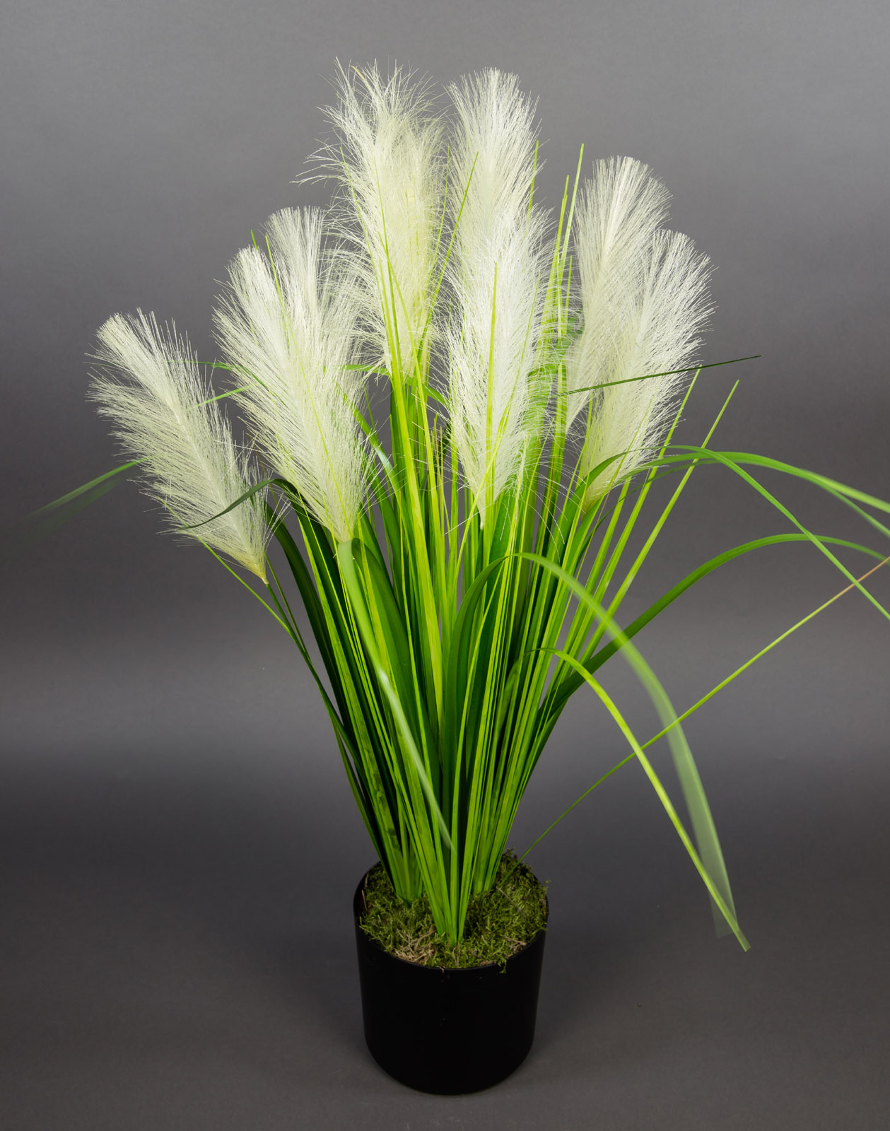 palmengrasbusch 75cm im topf dp kunstpflanzen k nstlicher grasbusch palmengras ebay. Black Bedroom Furniture Sets. Home Design Ideas