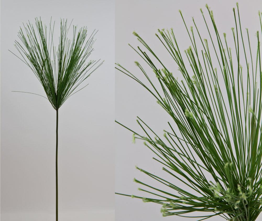 papyrusgras lang 68cm fs k nstliches gras papyrus ebay. Black Bedroom Furniture Sets. Home Design Ideas