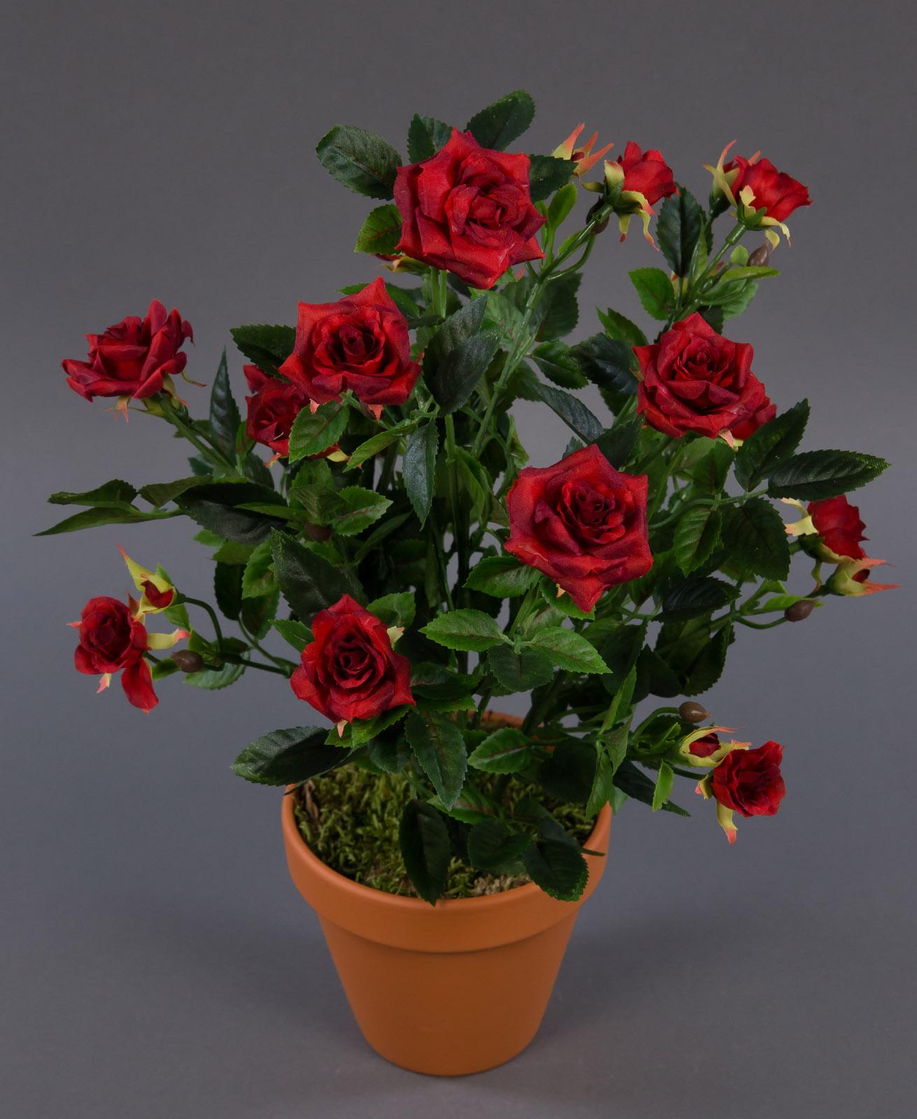 rosenbusch 36cm rot ft kunstpflanzen k nstliche rosen blumen pflanzen. Black Bedroom Furniture Sets. Home Design Ideas