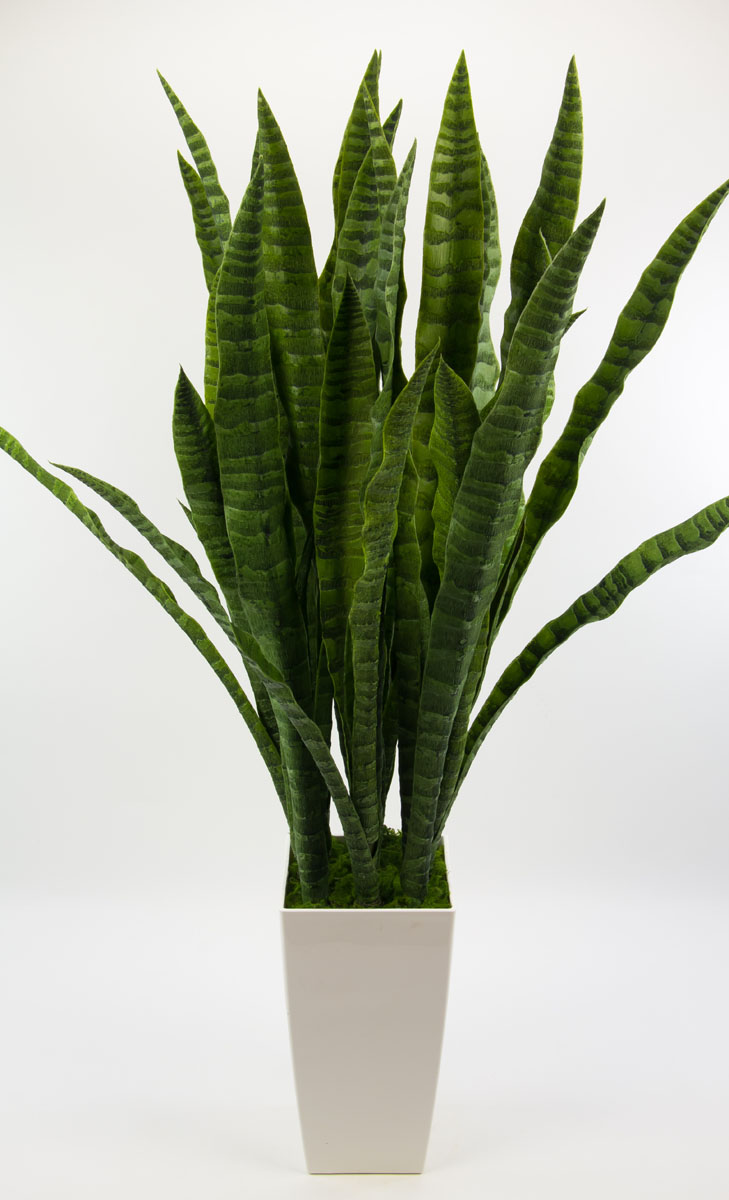 sansevieria im wei en hochtopf 90cm kunstpflanzen. Black Bedroom Furniture Sets. Home Design Ideas