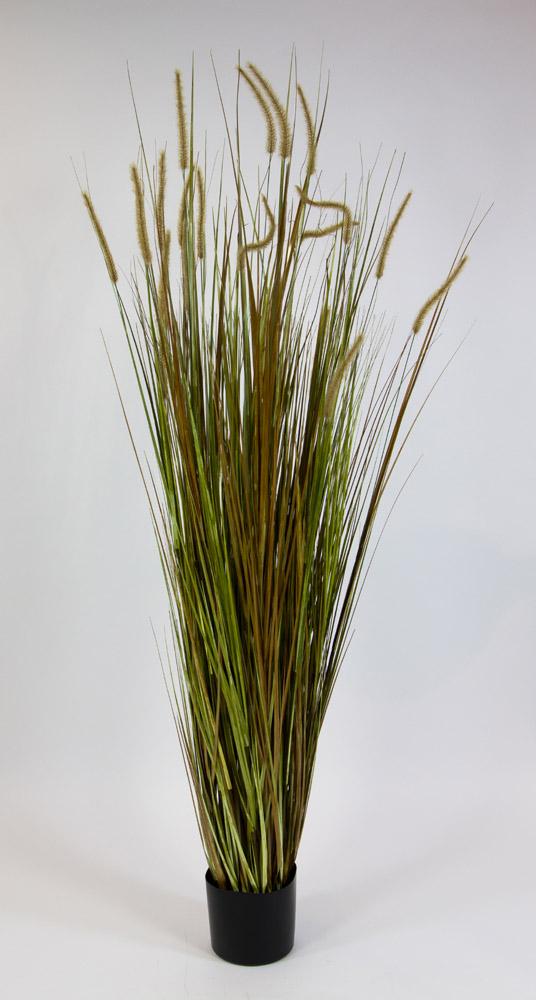 schilfgras pflanze 180cm ga kunstpflanzen k nstliche pflanzen gr ser gras schilf ebay. Black Bedroom Furniture Sets. Home Design Ideas