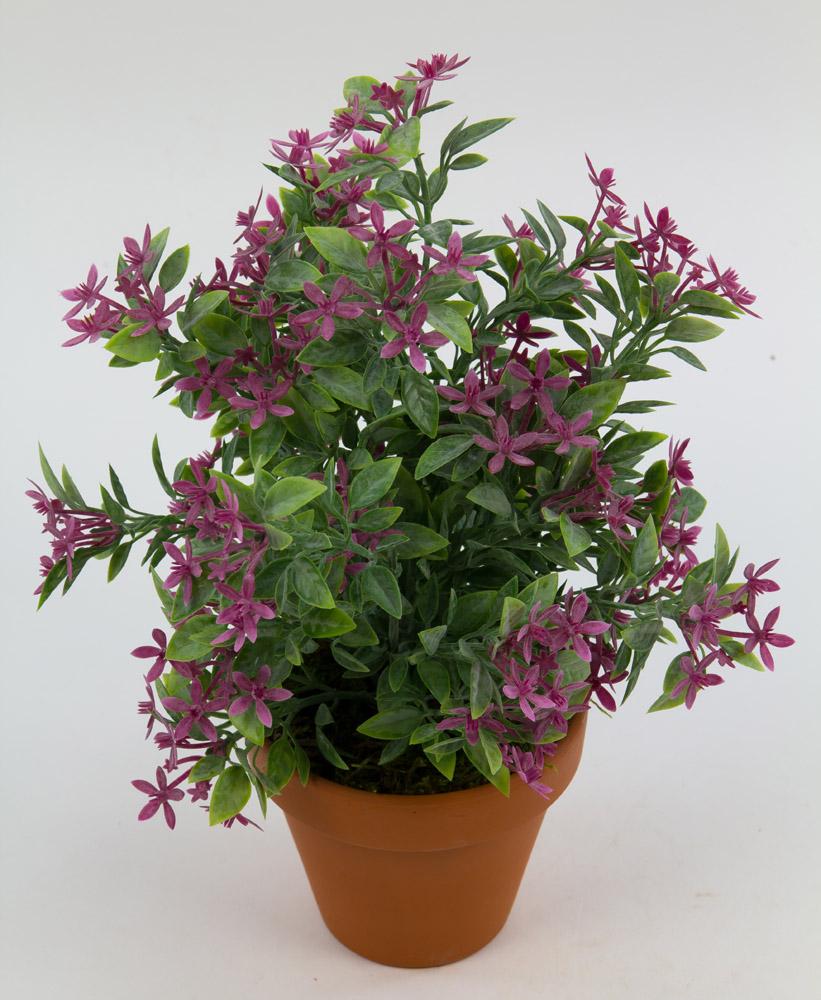 sternbl tenbusch 26cm fuchsia im topf ga kunstpflanzen k nstliche pflanzen. Black Bedroom Furniture Sets. Home Design Ideas