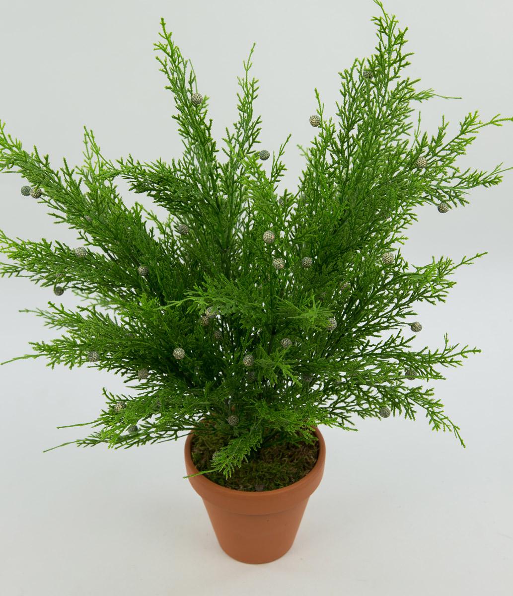 zedernbusch 48cm im topf cg kunstpflanzen k nstliche zeder pflanzen ebay. Black Bedroom Furniture Sets. Home Design Ideas