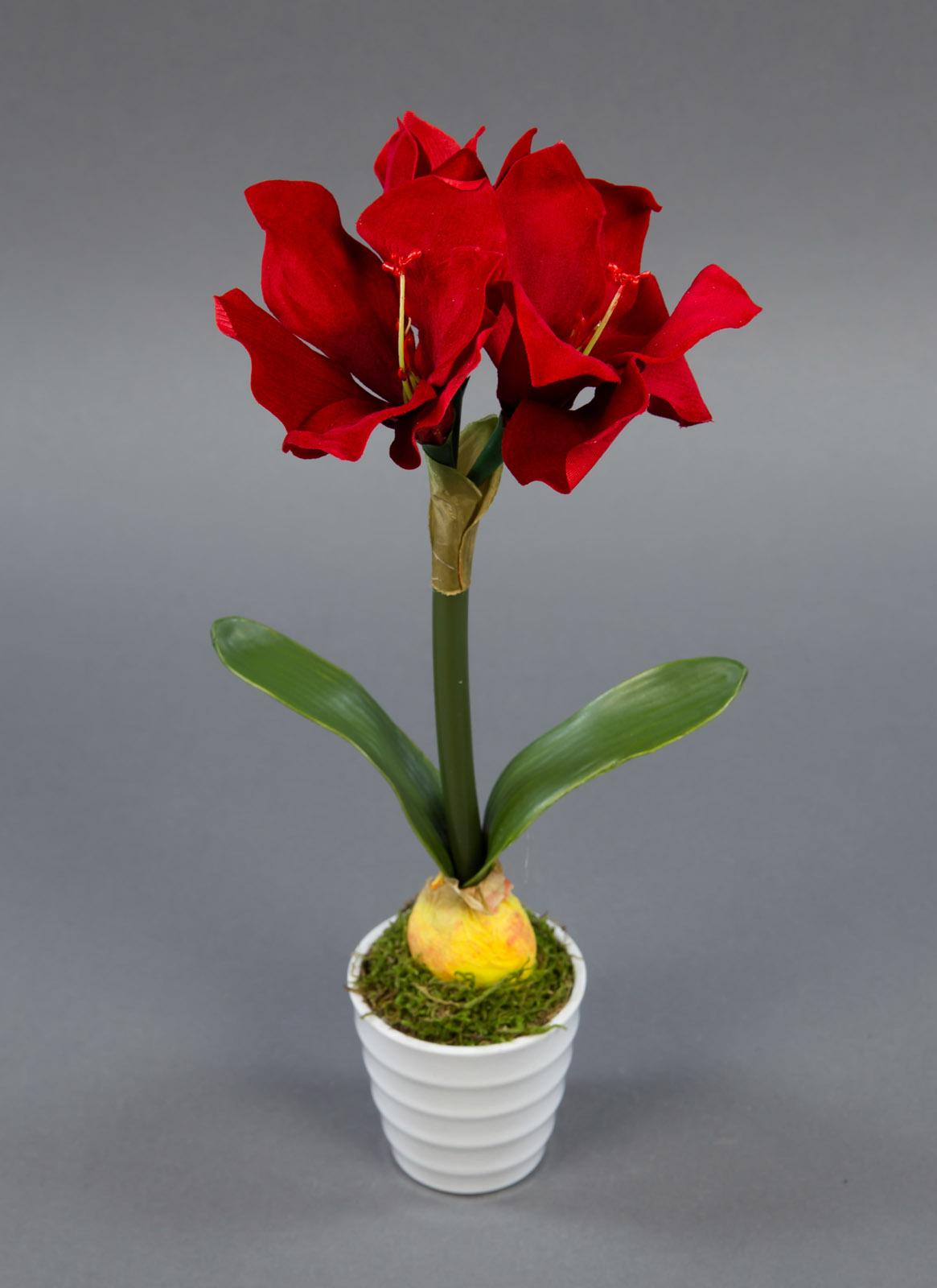 amaryllis pflanze 32cm rot im wei en dekotopf nt k nstliche pflanze kunstblumen ebay. Black Bedroom Furniture Sets. Home Design Ideas