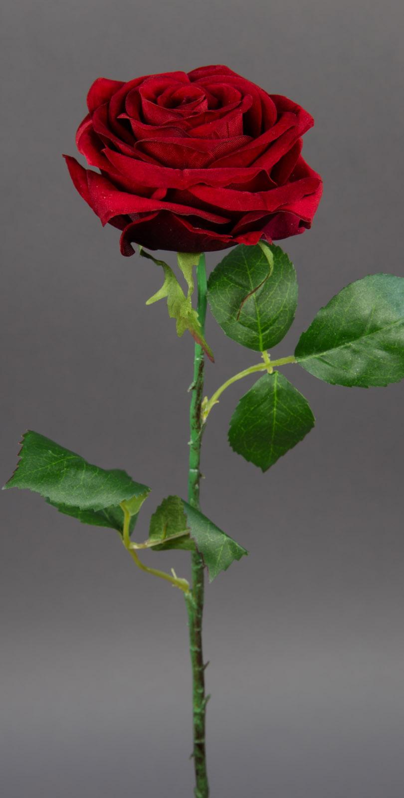 baccararose 54cm rot cg kunstblumen seidenblumen k nstliche blumen baccara rose ebay. Black Bedroom Furniture Sets. Home Design Ideas