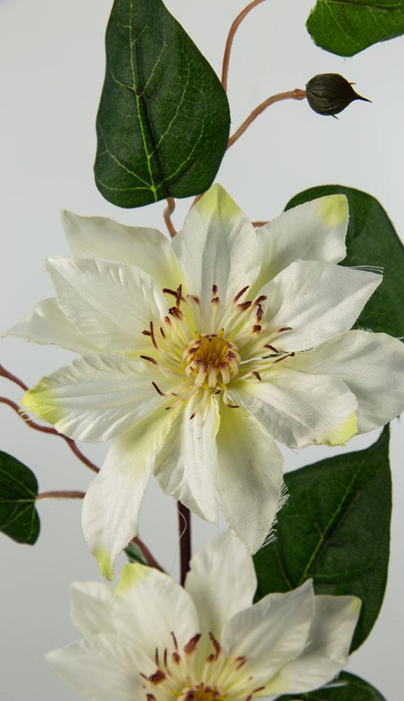 Clematiszweig 84cm weiß-creme DP Kunstblumen künstliche Blumen ...