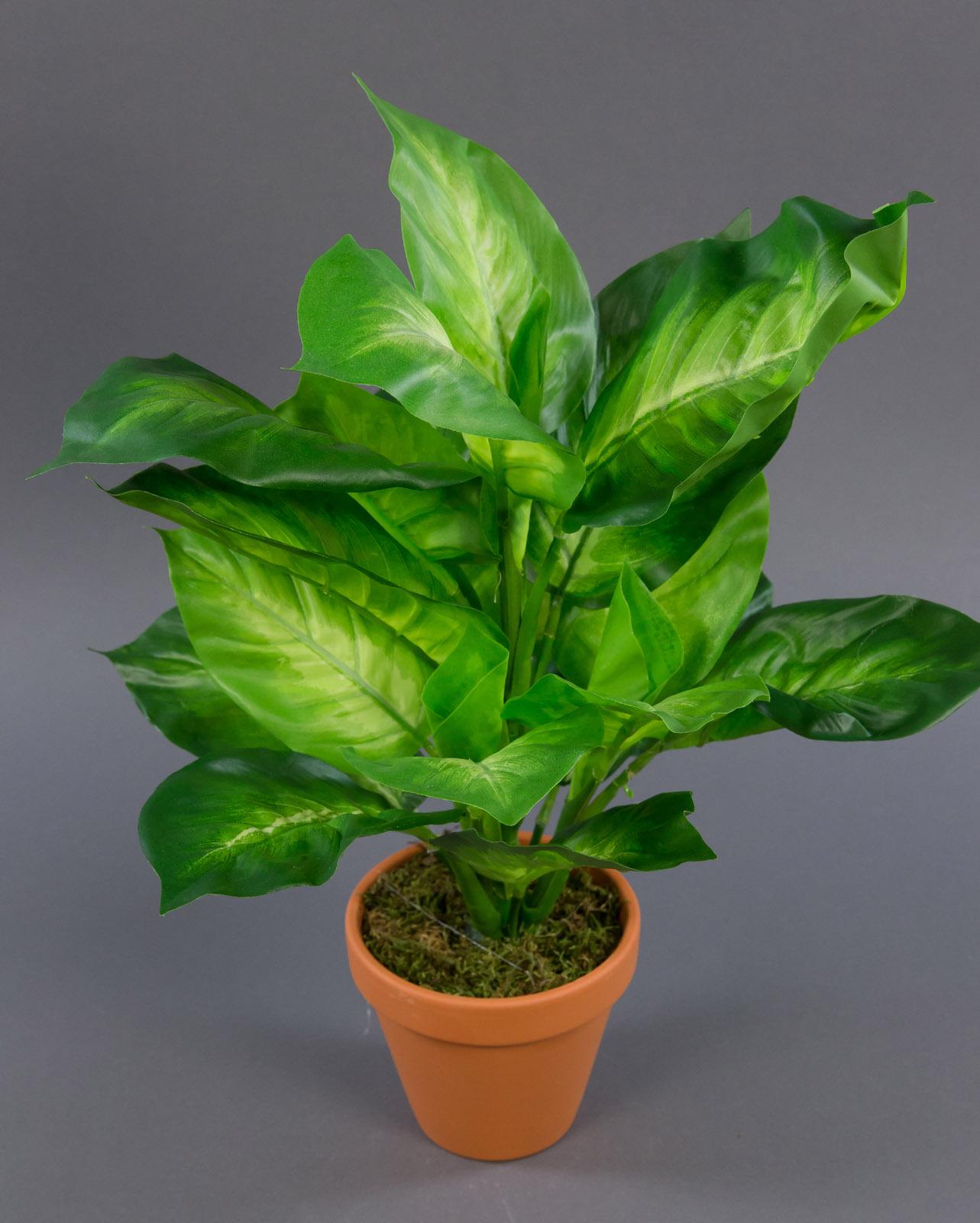 dieffenbachia gold natural touch 42cm ga kunstpflanzen k nstliche pflanzen ebay. Black Bedroom Furniture Sets. Home Design Ideas