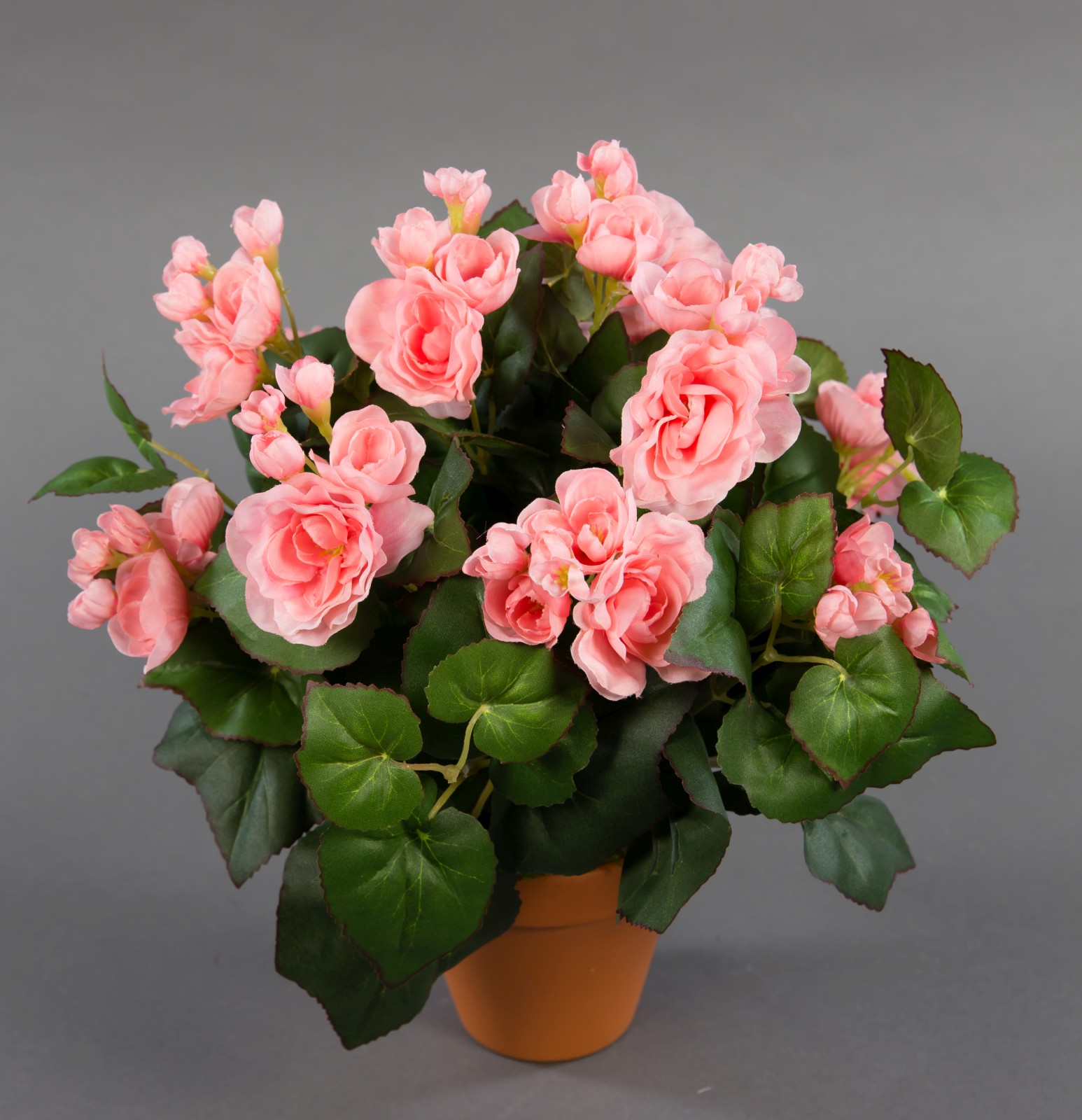 gro e begonie 32cm rosa im topf lm kunstpflanzen k nstliche blumen kunstblumen ebay. Black Bedroom Furniture Sets. Home Design Ideas