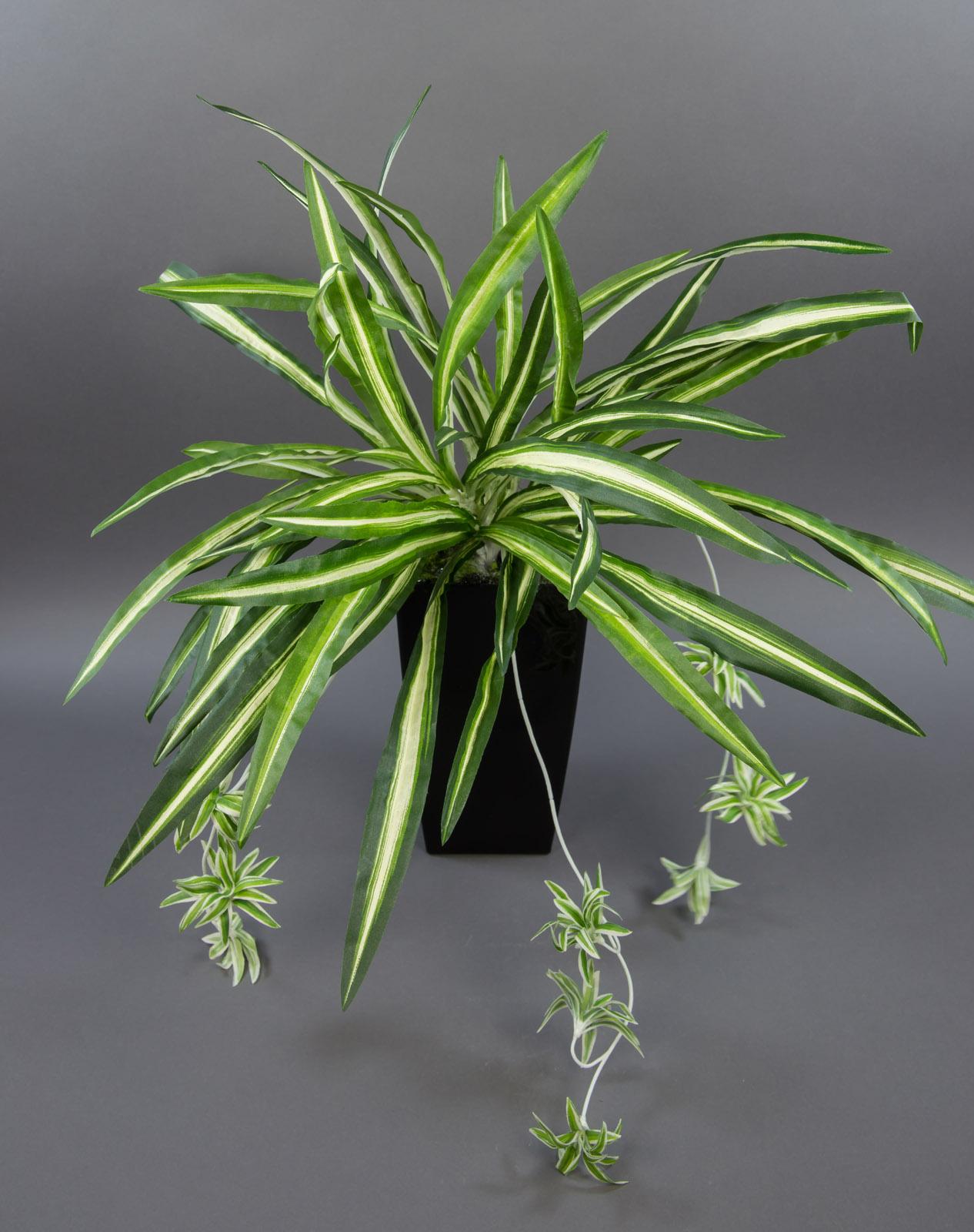 gr nlilie 60x54cm ohne topf pf kunstpflanzen k nstliche pflanzen spider ebay. Black Bedroom Furniture Sets. Home Design Ideas