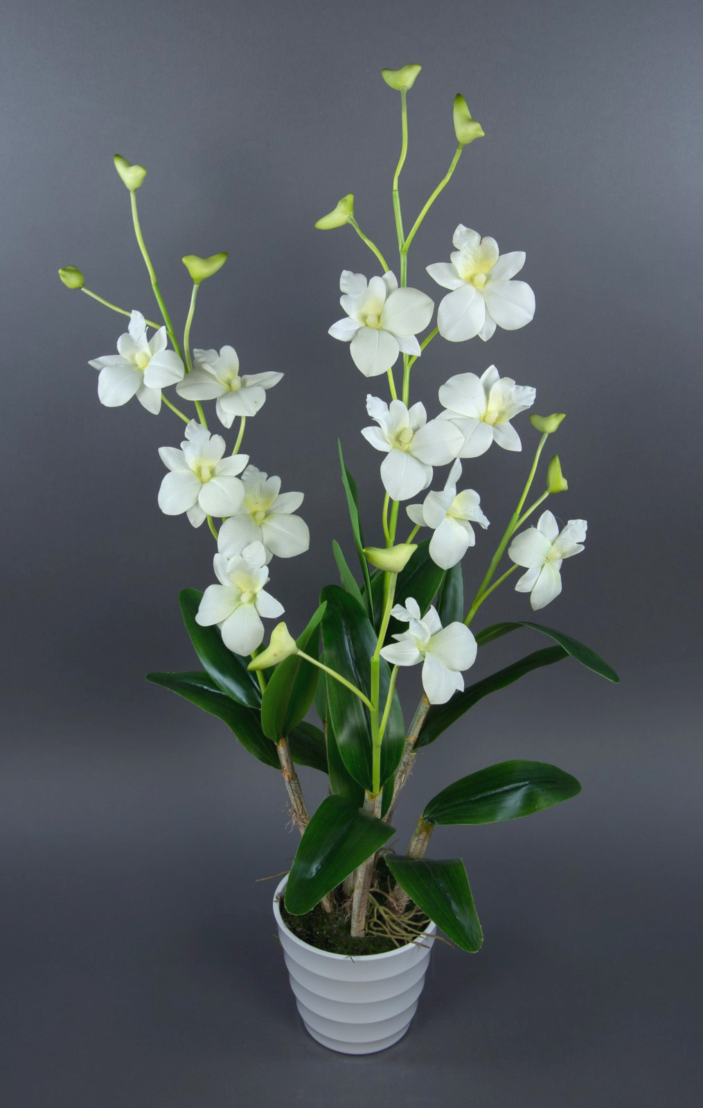 orchidee dendrobium 75x35cm wei creme im wei en dekotopf ga kunstblumen ebay. Black Bedroom Furniture Sets. Home Design Ideas