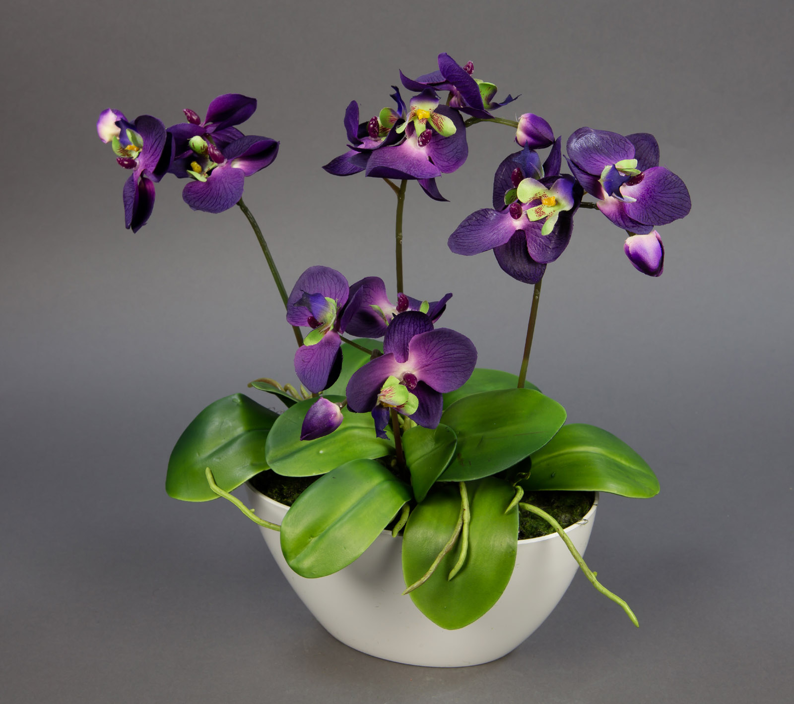 Orchideen arrangement 38x36cm lila in wei er dekoschale ga kunstblumen ebay - Orchideen arrangement ...