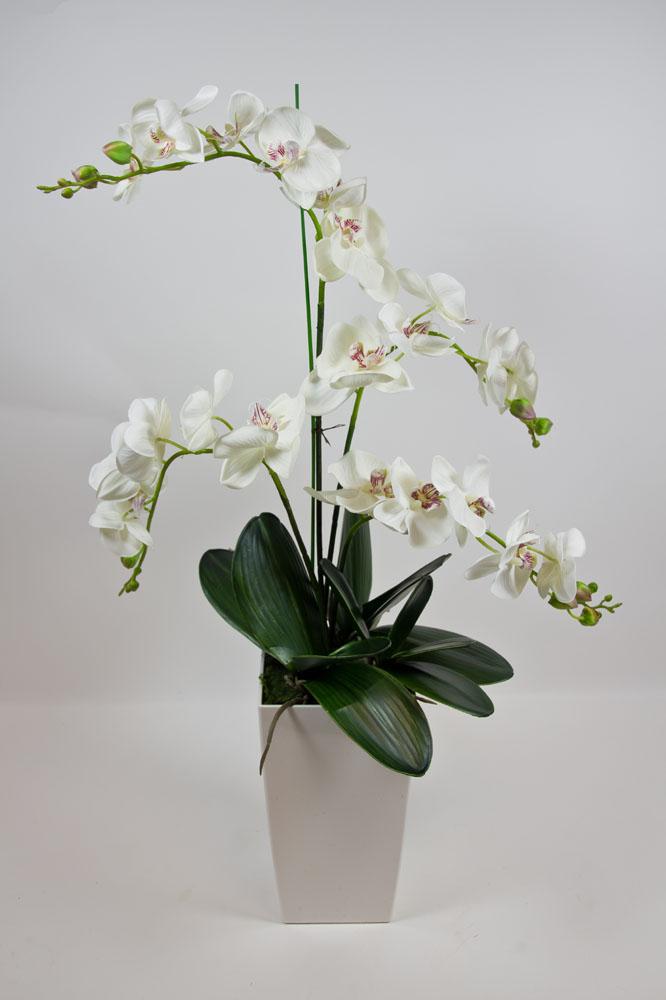 orchideen arrangement deluxe 80cm wei creme ad k nstliche orchidee seidenblumen ebay. Black Bedroom Furniture Sets. Home Design Ideas