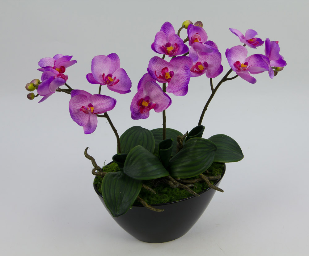 Orchideen arrangement 34x36cm lavendel flieder in schwarzer dekoschale ar ebay - Orchideen arrangement ...