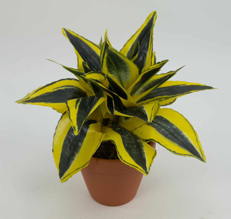 sansevieria 24cm gold gr n im topf pf kunstpflanzen k nstliche pflanzen ebay. Black Bedroom Furniture Sets. Home Design Ideas