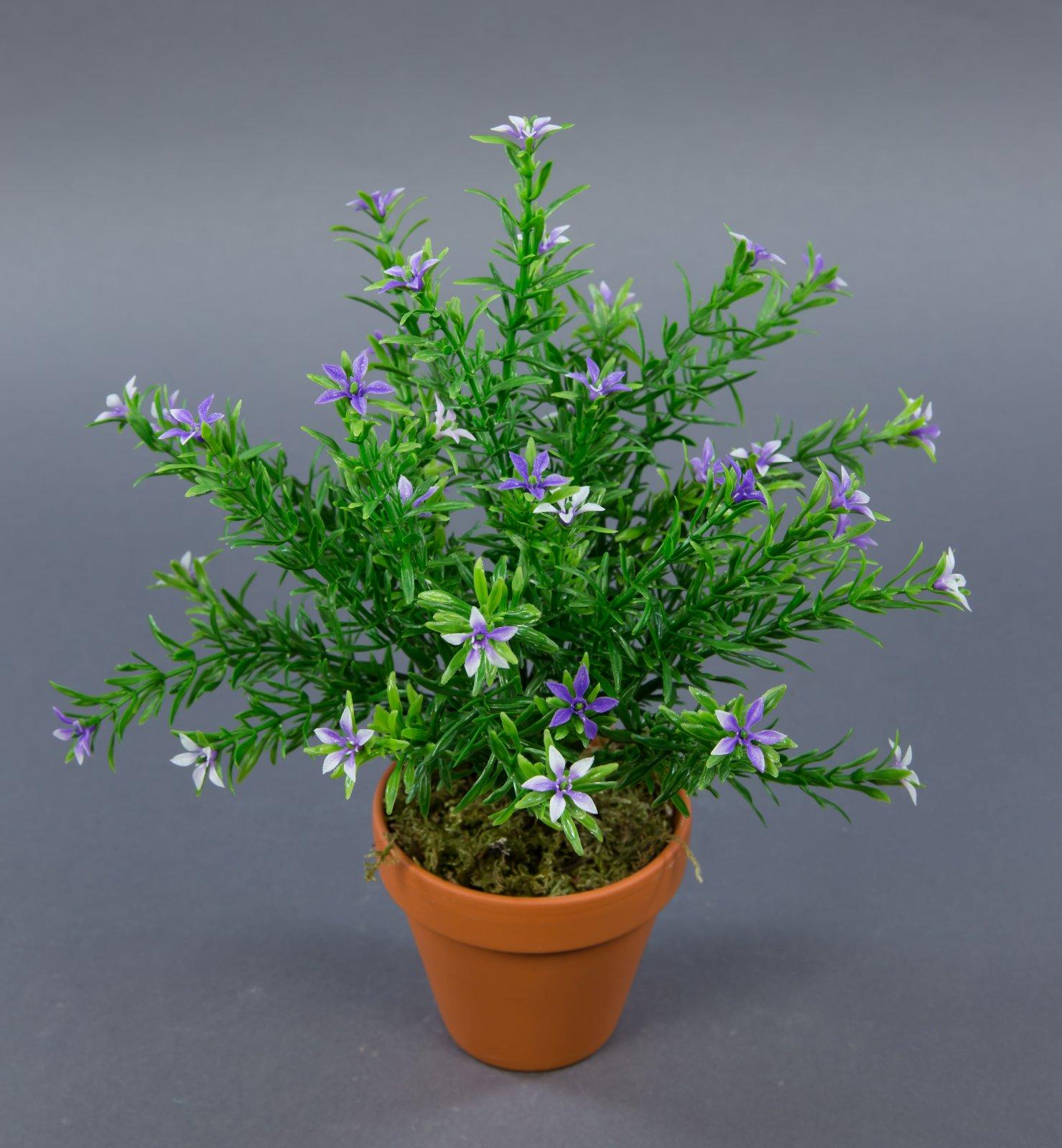sternbl tenbusch 28cm lila im topf ga kunstblumen kunstpflanzen k nstliche blume ebay. Black Bedroom Furniture Sets. Home Design Ideas